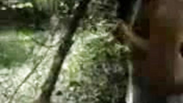 বড়ো সেক্সি বাংলা গান মাই, দুর্দশা, বড়ো মাই, গ্রুপ